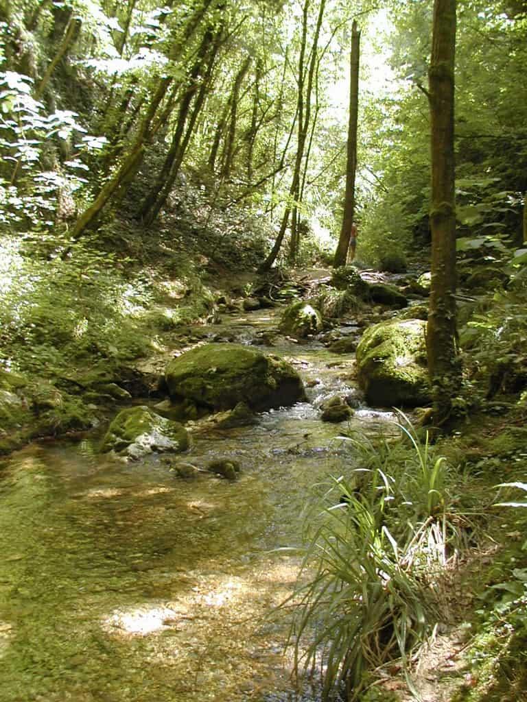 Parco nazionale della Maiella - Natura