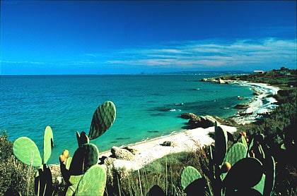 Punta Aderci San Nicola